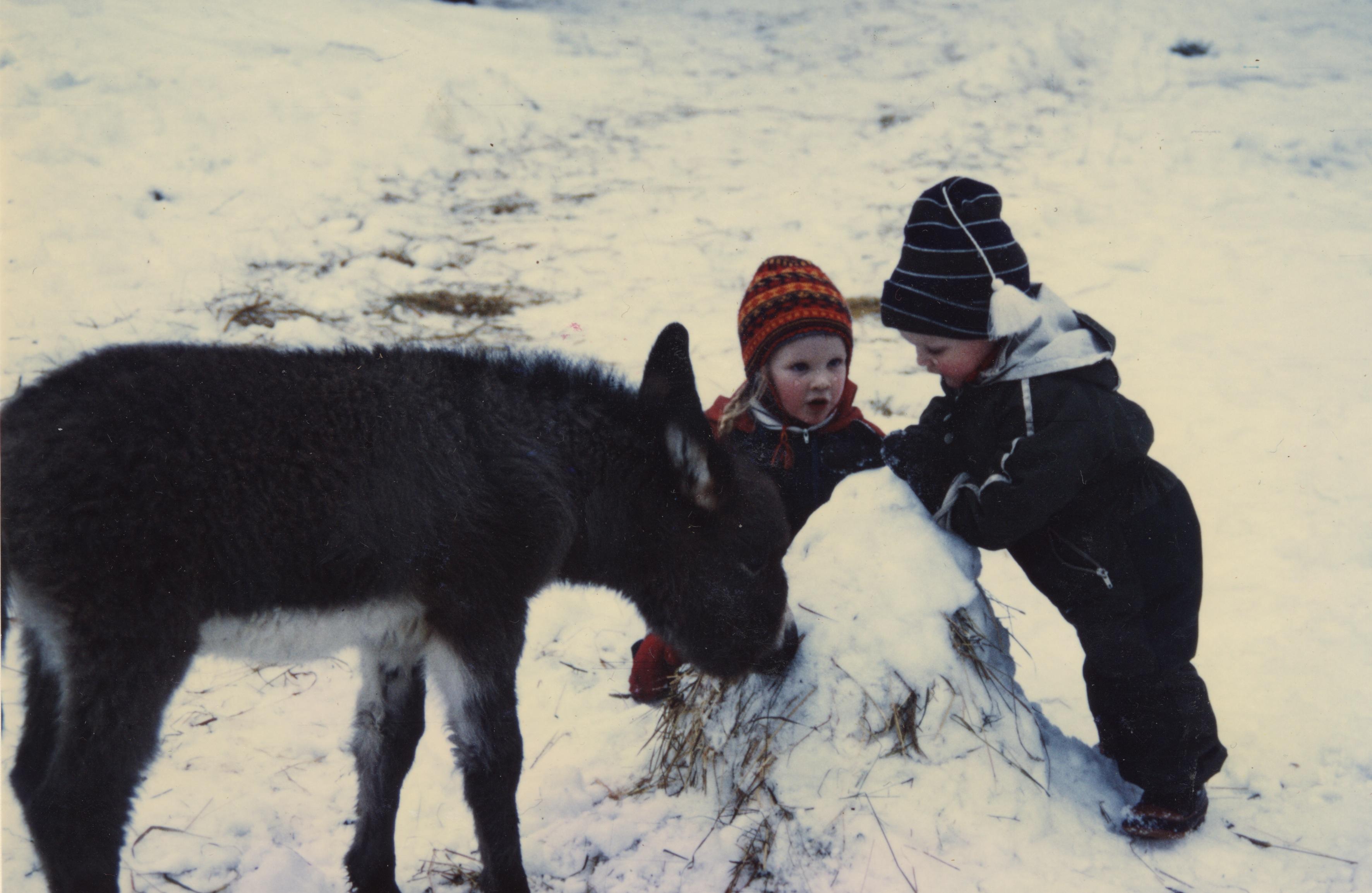 Susanna fölet, Jonas o Hannah 1988