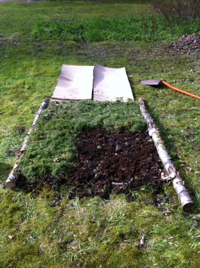 Sen täckte jag med gräsklipp
