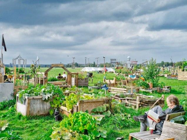 Tempelhof City gardening